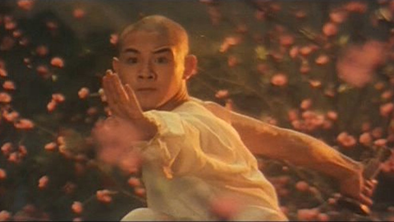 Review: Shaolin Temple (1982)
