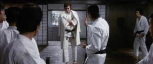 karateforlife