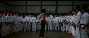 Karate Bear Fighter 2